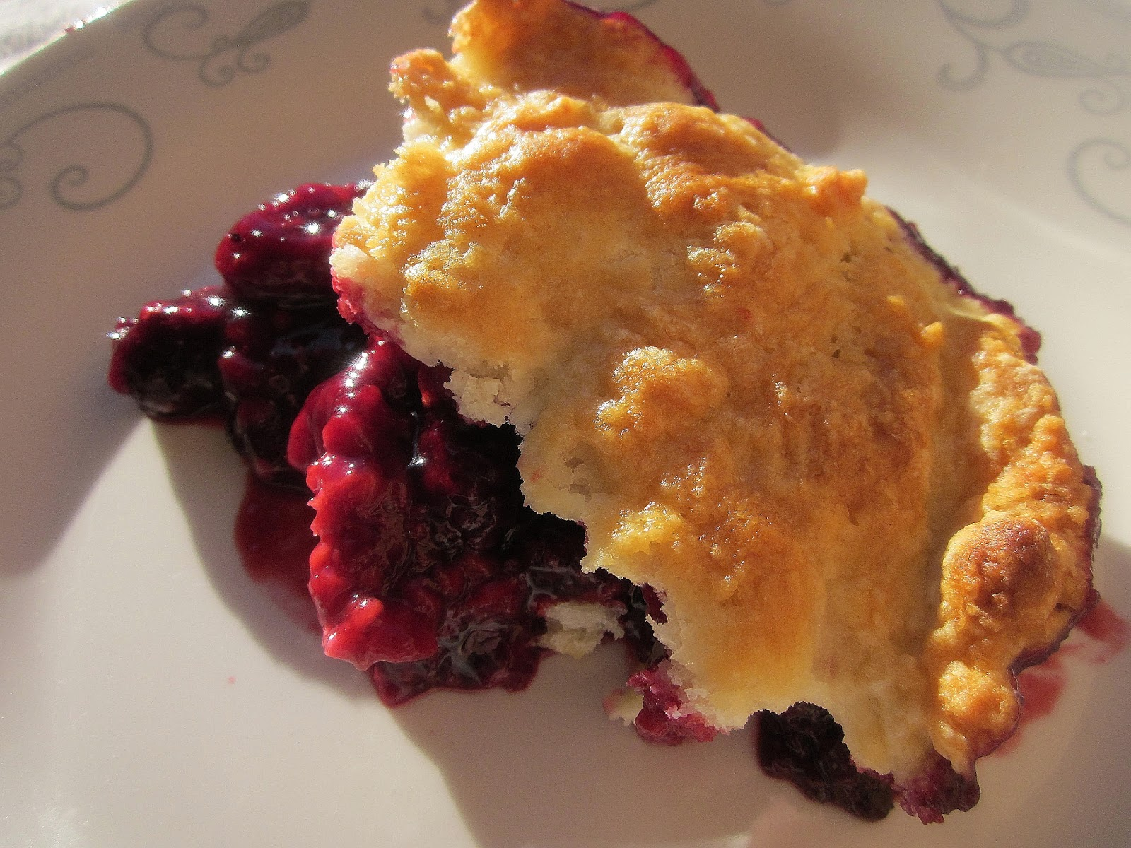 Blackberry Raspberry Cobbler (adapted from The Best Recipe Cookbook ...