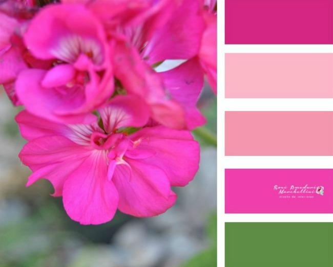 Paleta de colores roxi ameduri marchettini - Paleta de colores bruguer ...