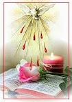 Divino Espírito Santo renova a face da terra!