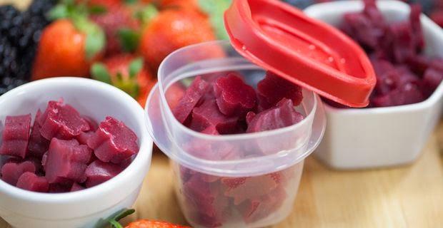 http://www.blendtec.com/blog/fruit-snacks-recipe