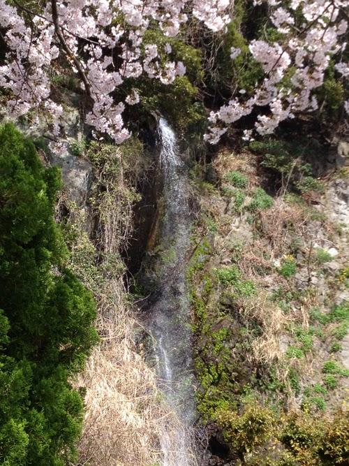 南越前町糠 白竜の滝公園