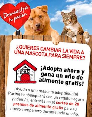 Adopta ahora a un perro o un gato y Purina te ayuda con 1 año de alimento gratis