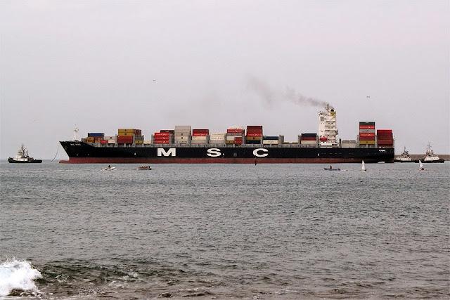 Container ship MSC Vigo, IMO 9480227, Livorno