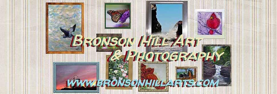 Bronson Hill Arts