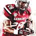 2014 South Carolina Gamecocks Football Team - Univ Of South Carolina Football Schedule 2014