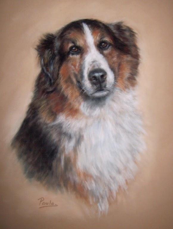 Hondenportret, hondenschilderij, hondentekening, hondenschilder, pastelschilderij, hondenportret in opdracht
