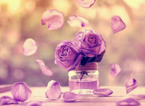 lilac-roses