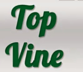 vine funny video