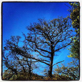 Cornish blue skies