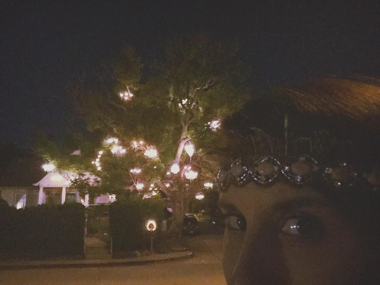 The Nerdy Girlie: LA Bucket List: The Chandelier Tree