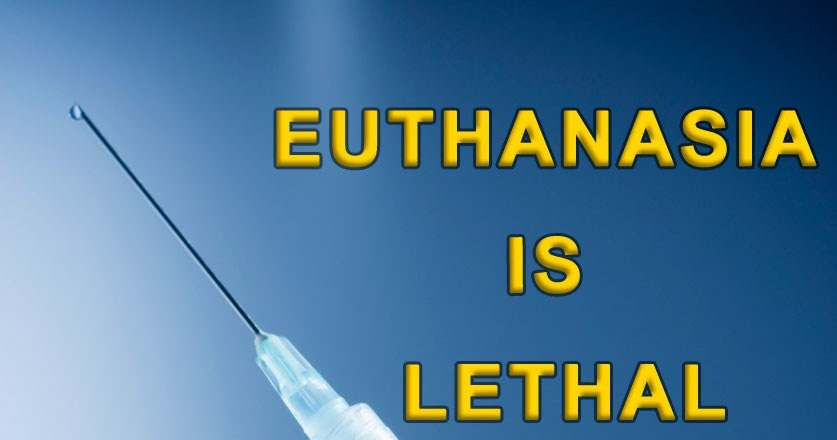an analysis of the issue of euthanasia and its legalization Ethical problems of euthanasia  other opponents fear that if euthanasia was made legal, the laws regulating it would be abused, and people would be killed who didn't really want to die.