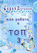 """Моя работа  в ТОП-3 блога """"Скрап Пуговка"""""""