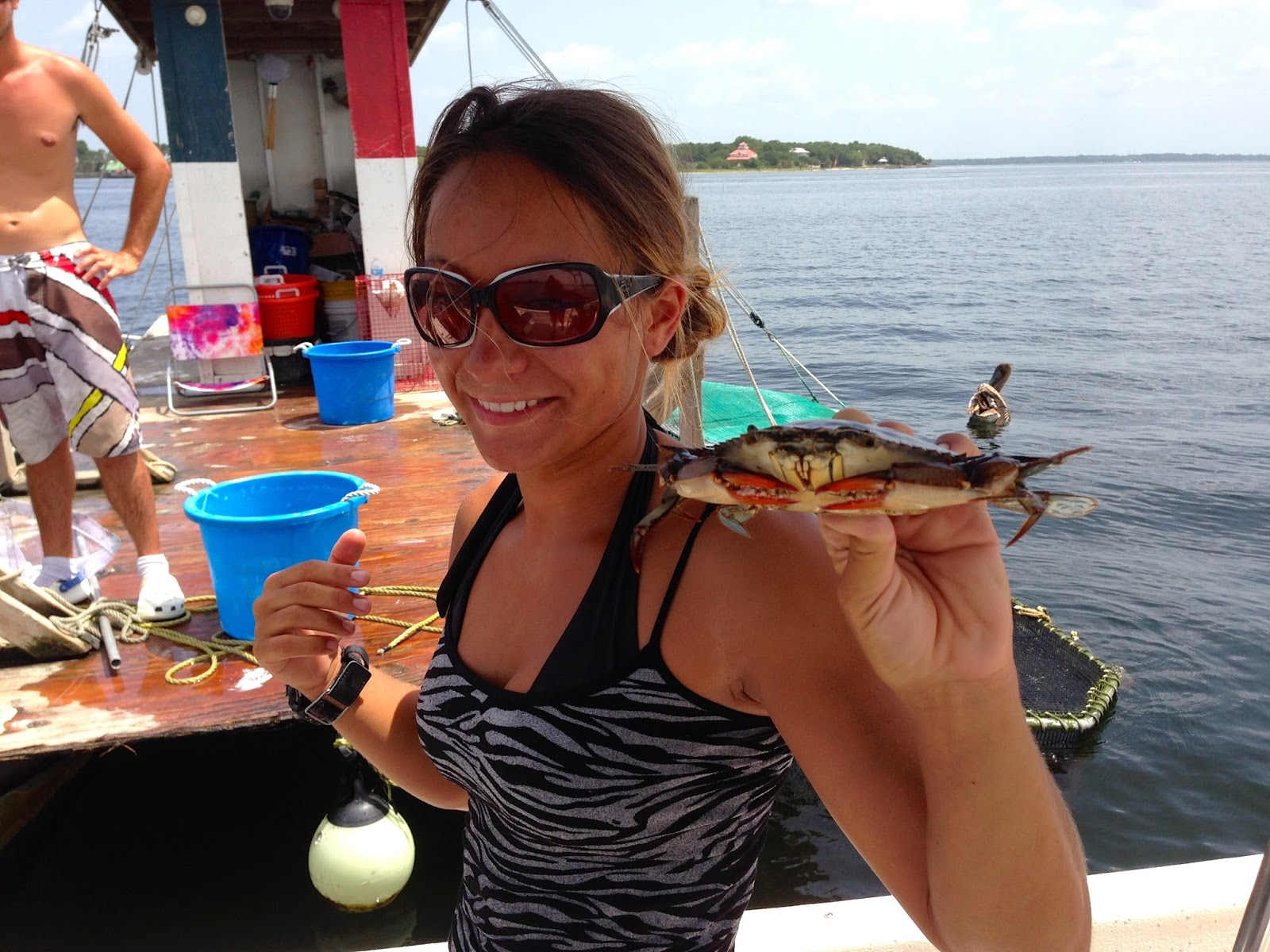 blue crab on snorkel tour