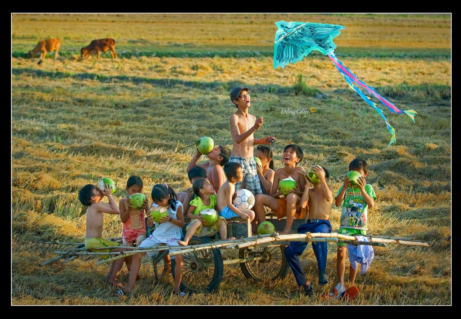 Tuổi thơ bên cánh đồng đầy lúa