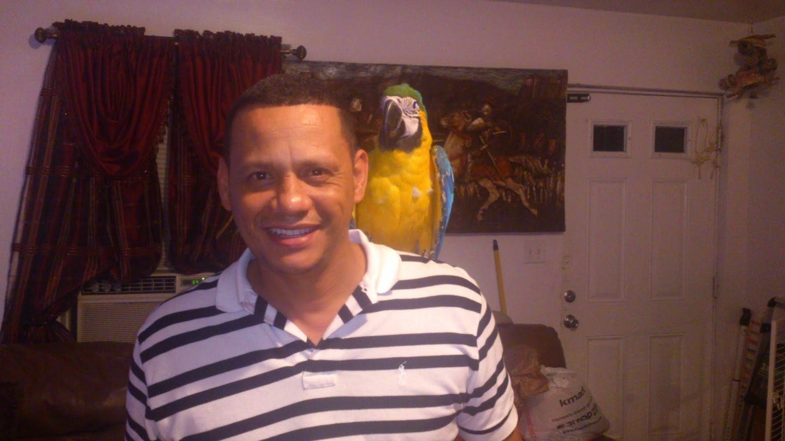 Diego, el papagayo / Diego, the parrot