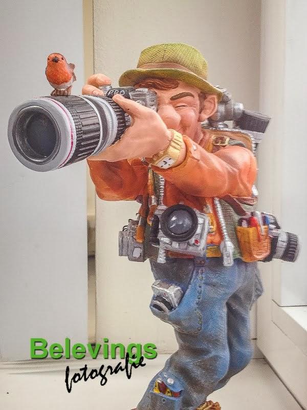 Op zoek naar een leuke (natuur) Fotografie Workshop ? Klik op de foto !