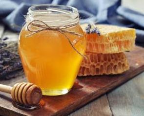 Gambar Madu Lebah