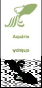 aquariohoroscopo jogo do bicho
