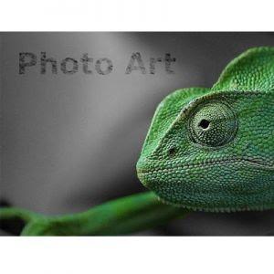 {focus_keyword} Inilah Tiga Aplikasi Edit Foto Terbaik Untuk Android Anda foto 2Bandro