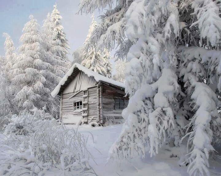 Snowy Log Cabin ~ Coolest cabins snowy log