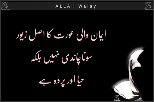 Ourat Ka Asal Zaivar Haya Aur Parda Ha - Advises Wallpapers For Facebook