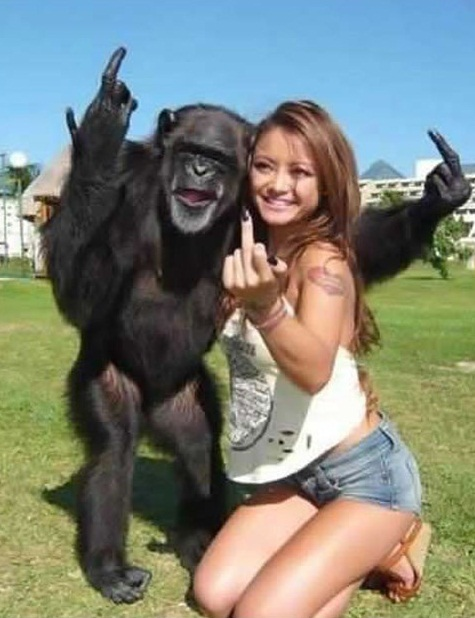 Monkey And Girl Having Fun