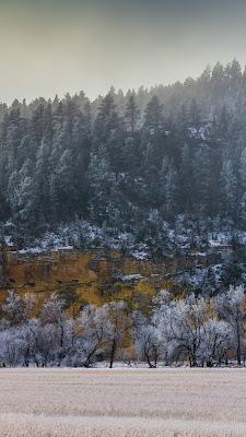Black Hills Photography, Snowfall, Fog, Hoar Frost