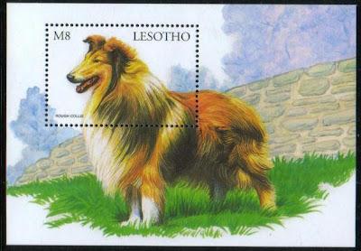 1999年レソト王国 ラフ・コリーの切手シート