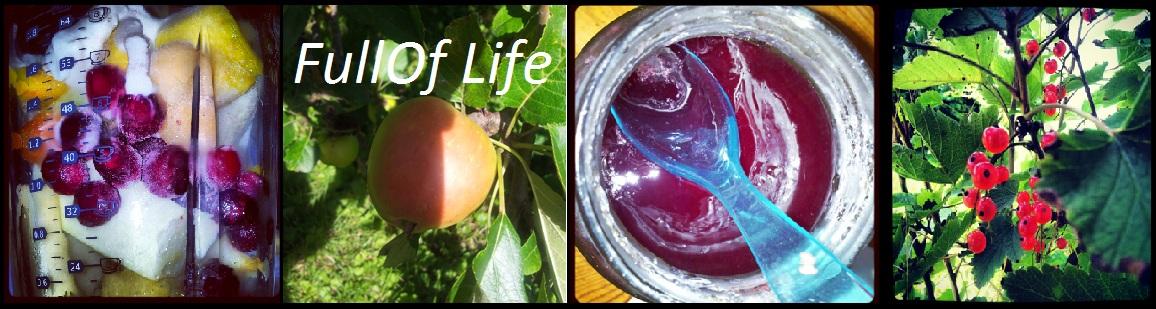 FullOf-Life