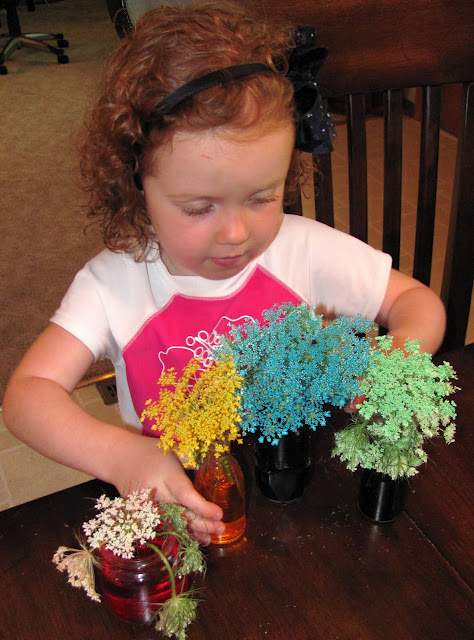Momma 39 s fun world 45 fun things you can do with food coloring for Cool things to do with roses