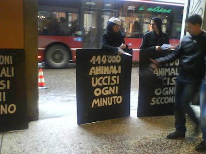 ABOLIAMO LA CARNE, LE UOVA, IL LATTE