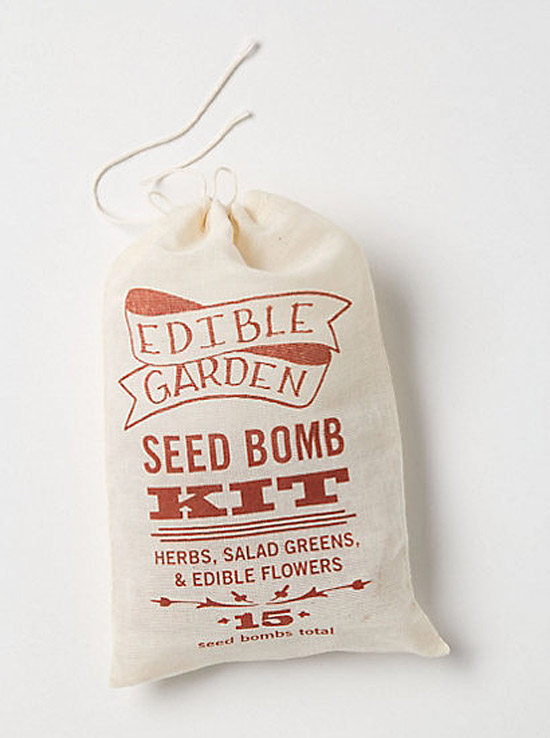 Summer fun with edible flowers - seed bomb kit