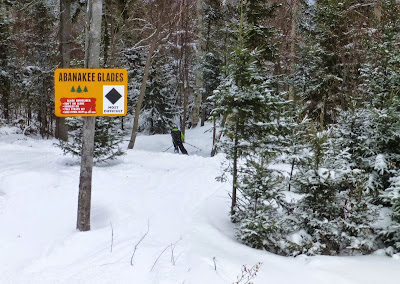 Skiing the new Abanakee glade at Gore Mountain, Saturday 02/07/2015.  The Saratoga Skier and Hiker, first-hand accounts of adventures in the Adirondacks and beyond, and Gore Mountain ski blog.