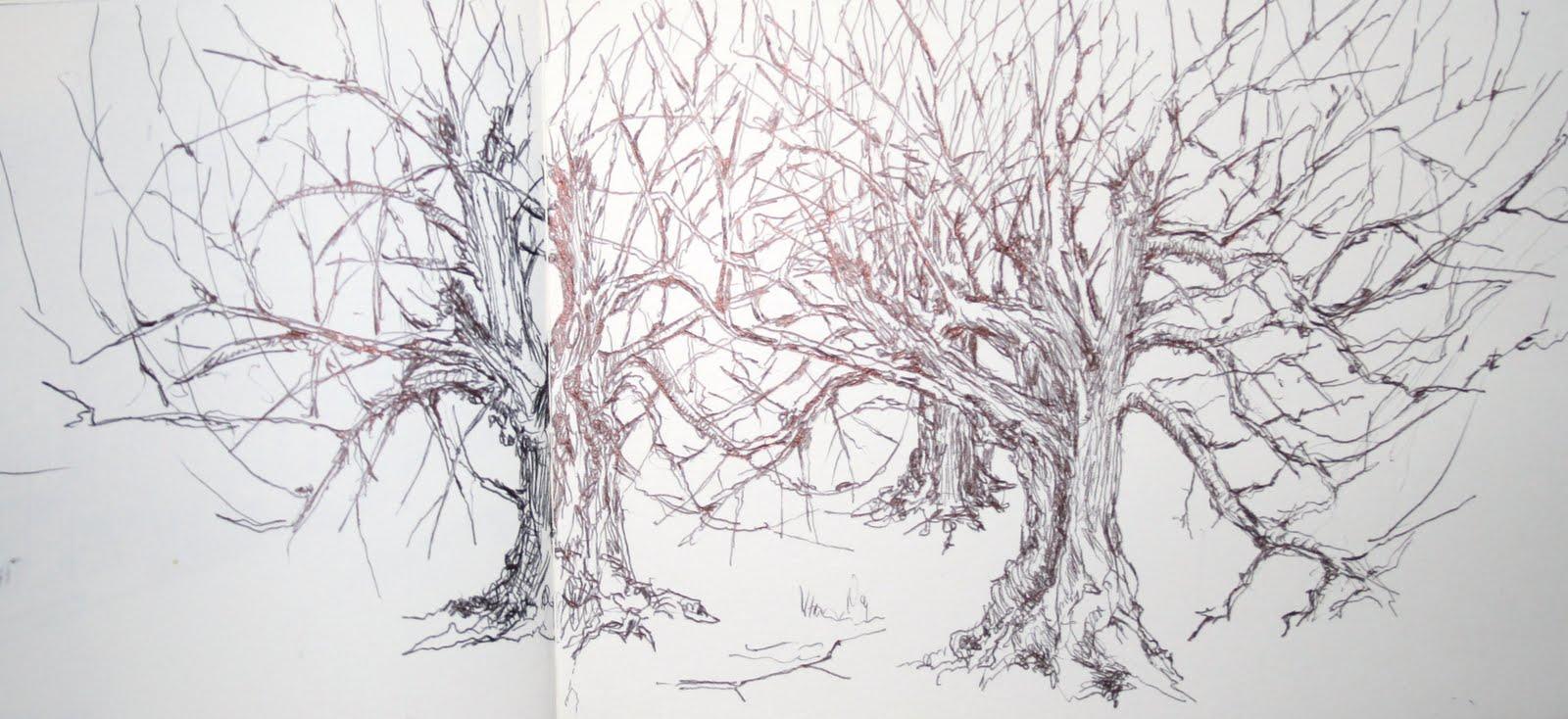 Arboles Secos Png Los árboles Secos Este Mundo