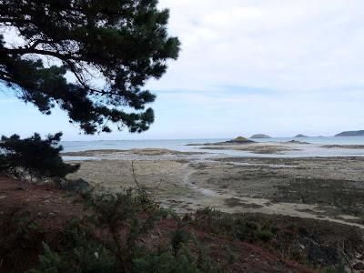 パンポル Paimpol ブルターニュ ギベン岬 Pointe de Guilben