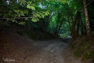 Senda-del-monte-Ulia.Fotografias