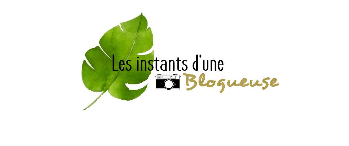 Les instants d'une blogueuse de Clermont-Ferrand