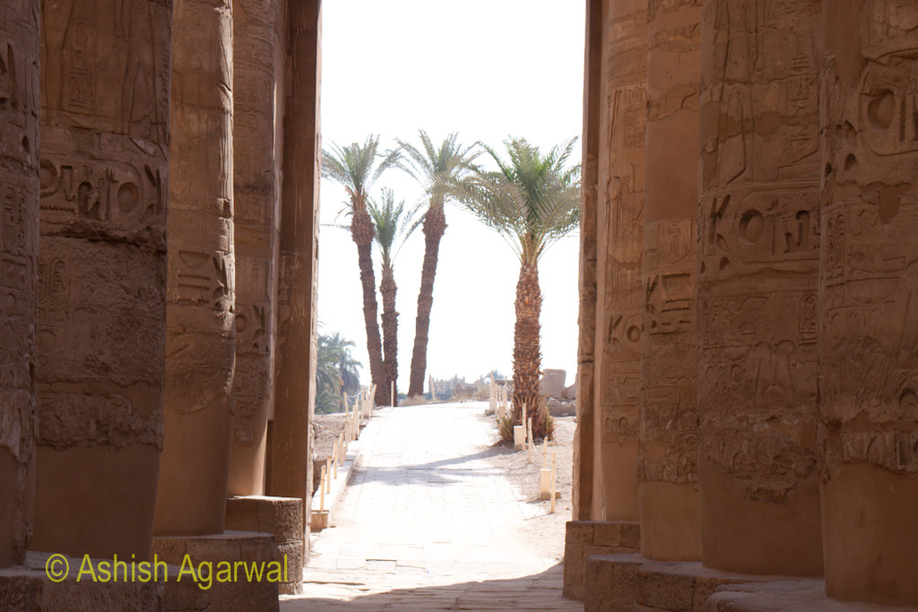 Palm trees visible through the doorway inside the Hypostyle Hall in the Karnak temple
