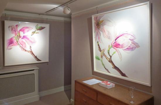 Magnolias © Rosie Sanders