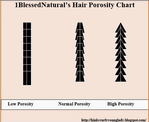 Hair porosity and natural hair 1blessednaturals hair porosity chart urmus Choice Image