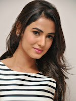 Sonal Chauhan photos at Pandaga Chesko promotion-cover-photo