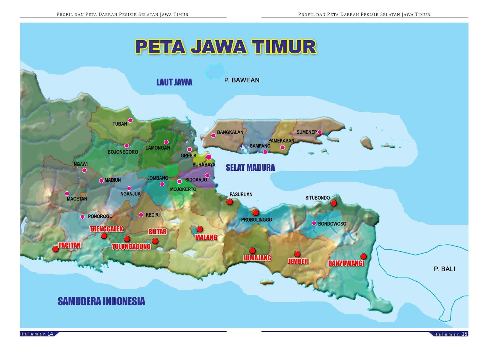 Honda Ruckus Manual Diagram Block Wiring Explanation Jawa Peta Images Writing Sample Ideas And Guide Metropolitan