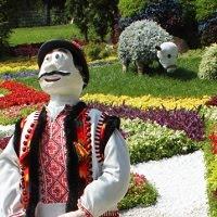 Выставка цветов на Певческом поле ко Дню Незалежности 2017