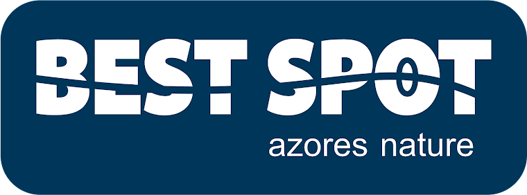 Best Spot - Azores Nature