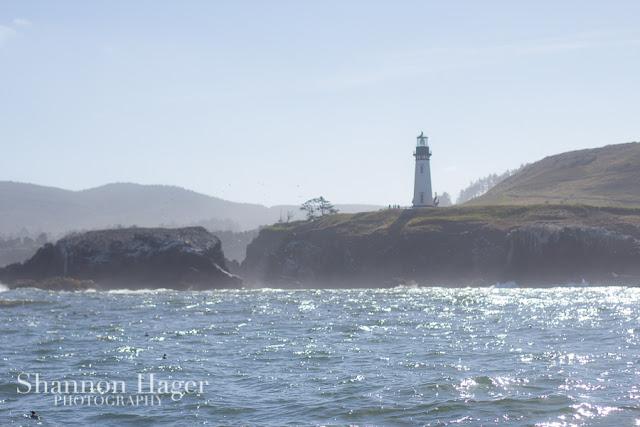 Shannon Hager Photography, Newport Oregon, Lighthouse