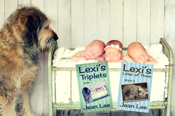 Lexi and the HAMs