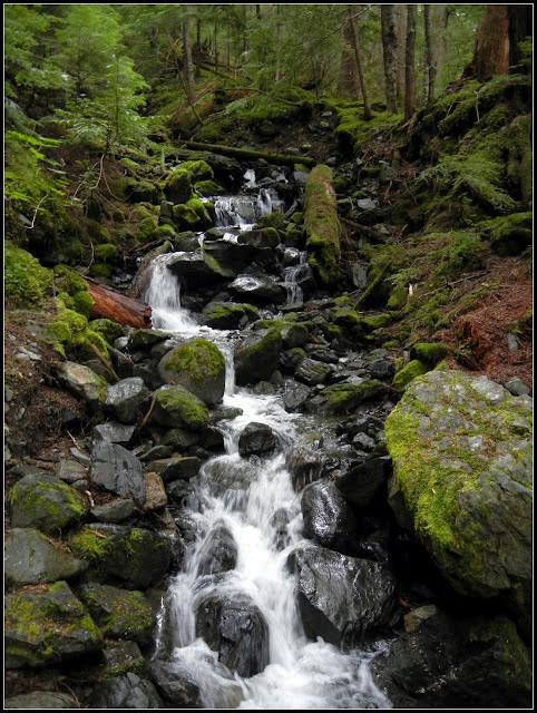 A waterfall in Garibaldi Provincial Park in British Columbia, Canada