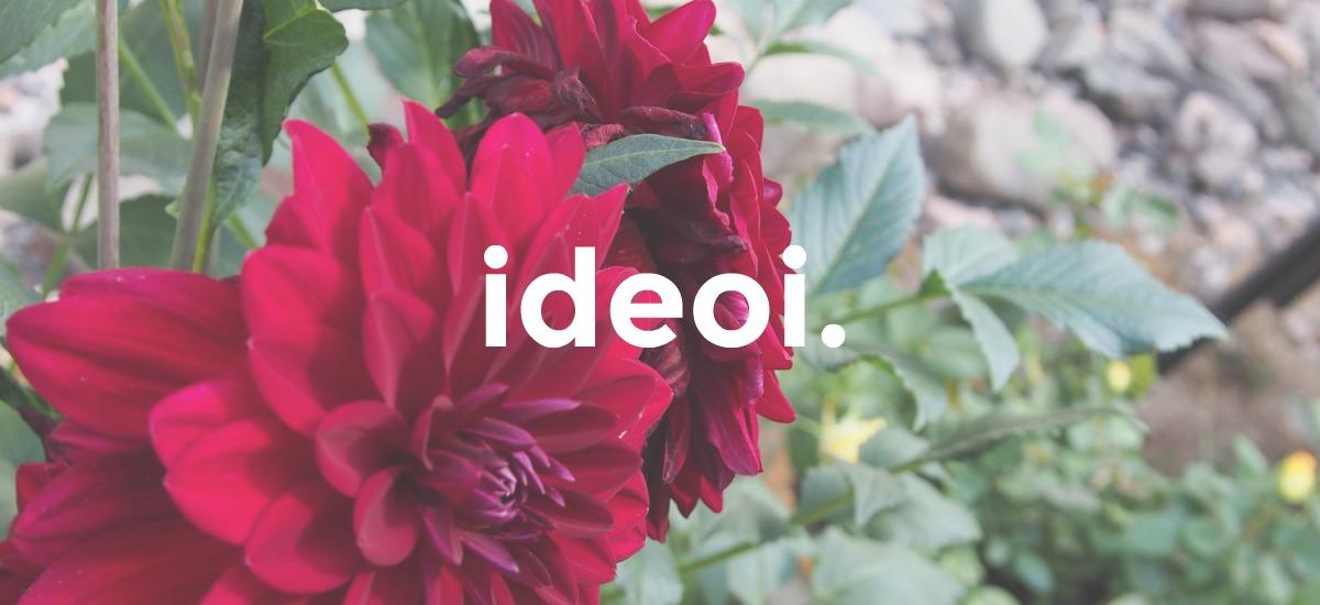 Ideoiblogi