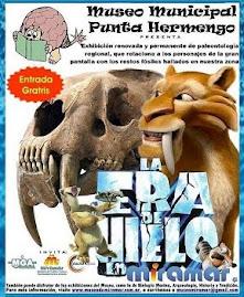 La Era de Hielo en Miramar. Visita nuestra muestra paleontologica.