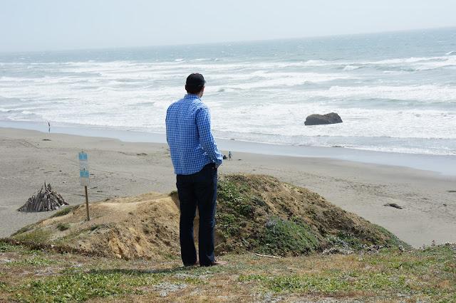 Overlooking Bodega Bay
